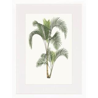 Art Virtuoso 'Palm Plants' Framed Art Print