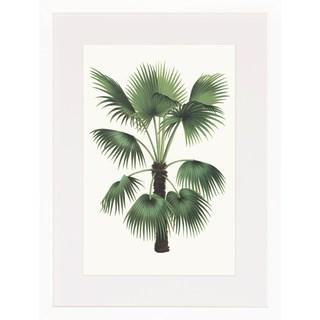 Palm Plants Framed Art Print