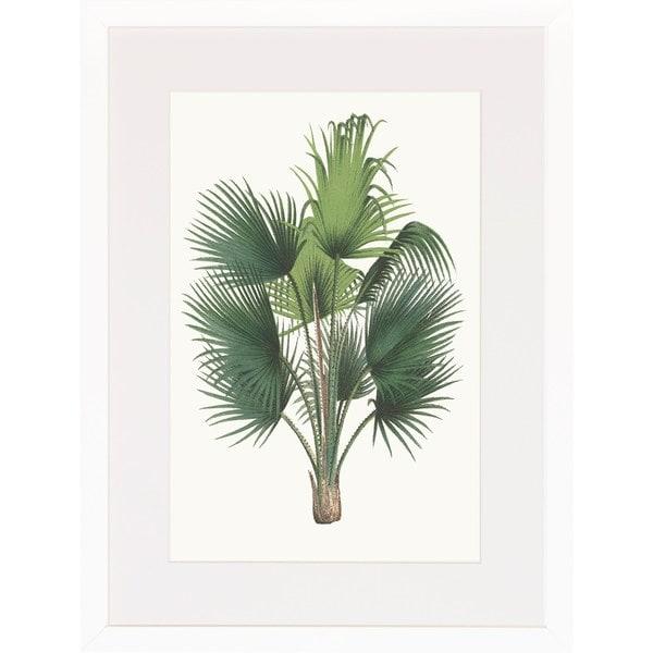 Art Virtuoso 'Palm Plants' White Wood Framed Art Print