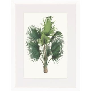 Art Virtuoso 'Palm Plants' White Wood Framed Art Print