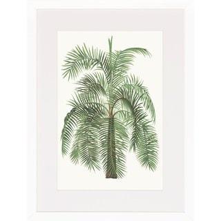 'Palm Plants' Framed Art Print