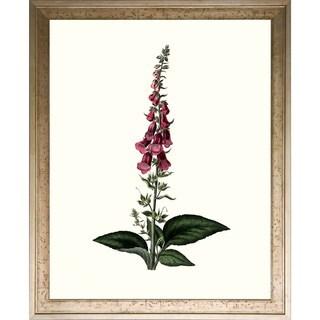 Art Virtuoso 'Floral Studies' Framed Giclee-print Wall Art