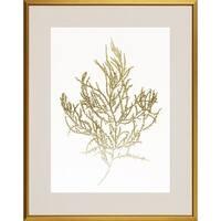 'Gold Foil Algae' Framed Art Print