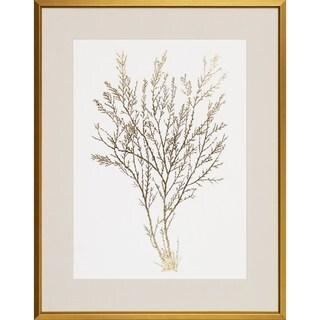 Gold Foil Algae' Framed Art Print
