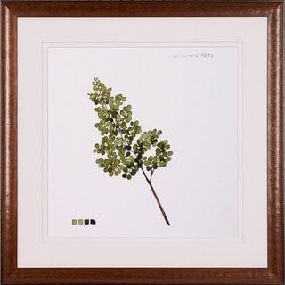 Art Virtuoso 'Watercolor Leaf Studies' Framed Art Print