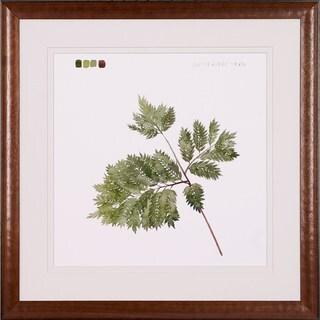 Grace Popp 'Watercolor Leaf Studies' Framed Art Print
