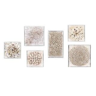 Cordoba Shell Shadow Boxes (Set of 6)