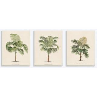 'Les Palmiers' Botanical Trio Lithograph Wall Plaque Art (Set of 3) - 10 x 15
