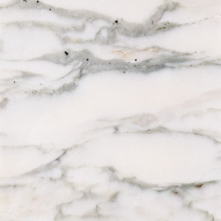 Calcatta Verde White Marble 18-inch x 18-inch x 3/8-inch Polished and Beveled Tiles