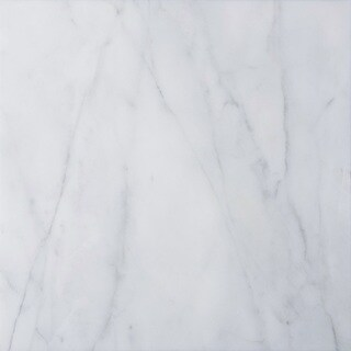 italian Carrara Venato White and Grey Marble 12-inch Square Polished Beveled Tiles|https://ak1.ostkcdn.com/images/products/12557737/P19358229.jpg?_ostk_perf_=percv&impolicy=medium