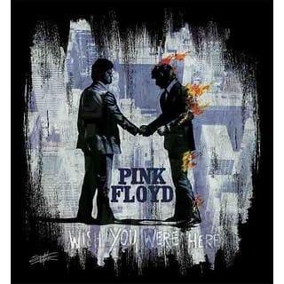 Stephen Fishwick Pink Floyd 'Wish You Were Here White' Canvas Wall Art