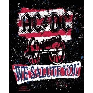 Stephen Fishwick AC/DC 'We Salute You Stripe' Canvas Wall Art