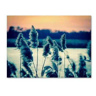 PIPA Fine Art 'Sunset on the Marsh 2' Canvas Art
