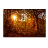 PIPA Fine Art 'Autumn Sunset' Canvas Art