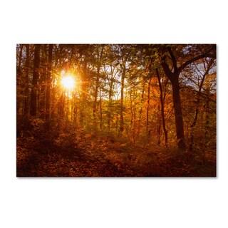 PIPA Fine Art 'Autumn Sunset' Canvas Art