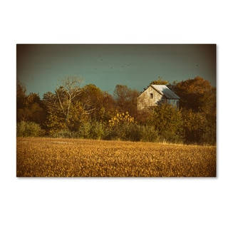 PIPA Fine Art 'Abandoned Barn In The Trees' Canvas Art
