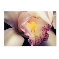 PIPA Fine Art 'Close-Up of Orchid' Canvas Art
