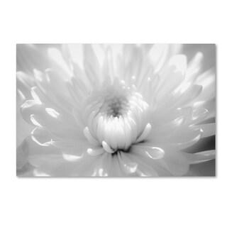 PIPA Fine Art 'Infrared Flower 2' Canvas Art