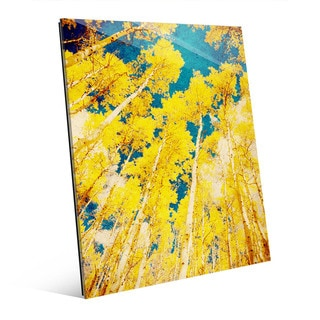 Golden Forest Wall' Art on Acrylic