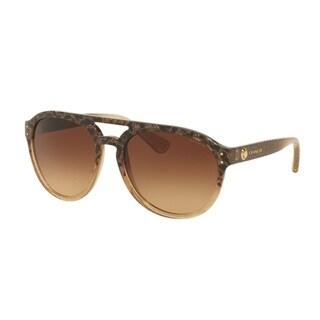 Coach HC8170 L150 536713 Wild Beast/Brn Blush Gltr Grad Womens Plastic Pilot Sunglasses
