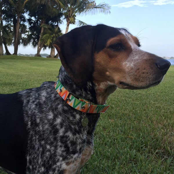 Pet Lounge Waterproof Pet Collar