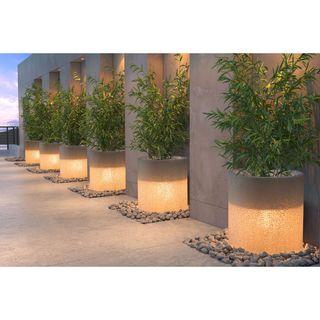Alta White Wood Illuminated Planter