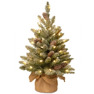 Snowy Concolor 2' Fir Tree with Battery-operated LED Lights