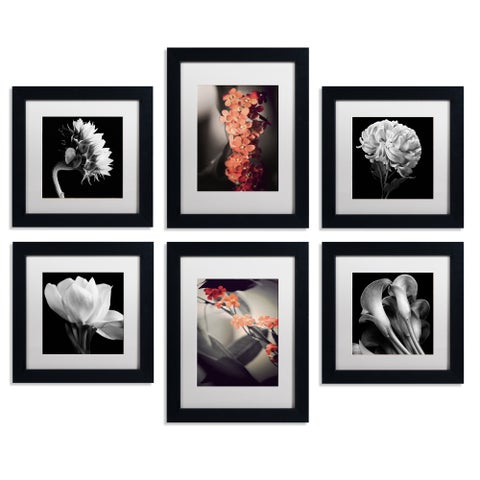 Floral Gallery Wall Collection Set of 6
