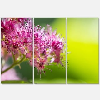 Pink Little Flowers in Green - Floral Glossy Metal Wall Art - 36Wx28H
