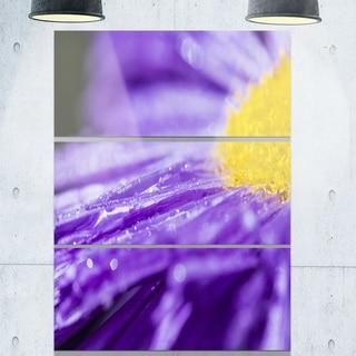 Large Violet Flower Petal Close-up - Flower Large Metal Wall Art - 36Wx28H