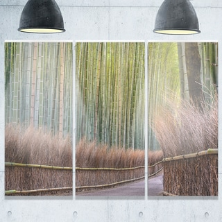 Pathway Inside Bamboo Forest - Forest Glossy Metal Wall Art - 36Wx28H