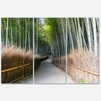 Straight Path in Bamboo Forest - Forest Glossy Metal Wall Art - 36Wx28H - 36 x 28