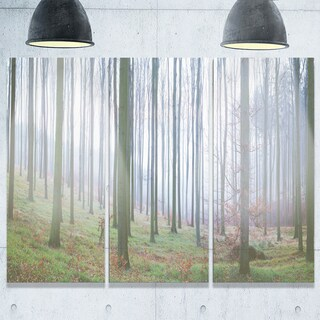 Autumn Tree Trunks Panorama - Oversized Forest Glossy Metal Wall Art - 36Wx28H