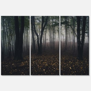 Dark Spooky Misty Wild Forest - Oversized Forest Glossy Metal Wall Art - 36Wx28H