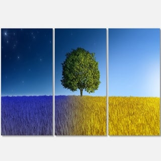 Tree in Night and Day - Landscape Glossy Metal Wall Art - 36Wx28H