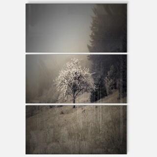 Apple Tree Vintage Style - Landscape Glossy Metal Wall Art - 36Wx28H
