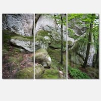 Deep Moss Forest with Rocks - Landscape Glossy Metal Wall Art - 36Wx28H