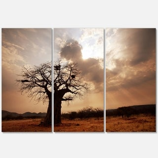 Large Baobab Tree under Clouds - Modern Landscape Glossy Metal Wall Art - 36Wx28H