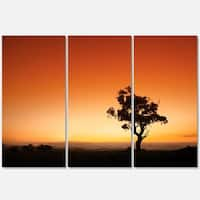 Sunrise with Lonely Tree - Extra Large Glossy Metal Wall Art - 36Wx28H Landscape