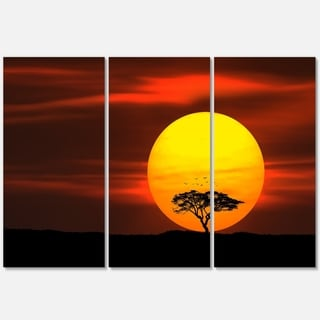 Lonely Tree with Birds at Sunset - Extra Large Glossy Metal Wall Art - 36Wx28H Landscape