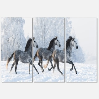 Herd of Horses Run Across Snow - Landscape Glossy Metal Wall Art - 36Wx28H