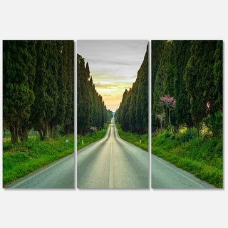 Straight Road through Cypress Trees - Oversized Landscape Glossy Metal Wall Art - 36Wx28H