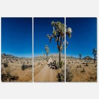 Sandy Desert Road Panorama - Oversized Landscape Glossy Metal Wall Art - 36Wx28H