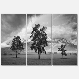 Three Trees in Front of Mountains - Landscape Glossy Metal Wall Art - 36Wx28H