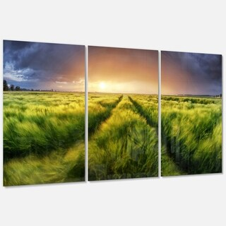 Storm and Light on Meadow - Landscape Glossy Metal Wall Art - 36Wx28H