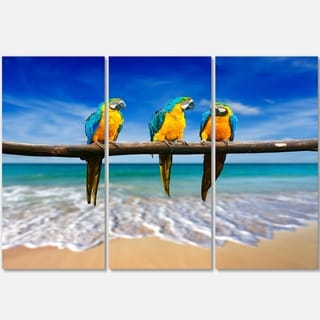 Blue Gold Macaws at Beach - Seashore Photo Metal Wall At - 36Wx28H