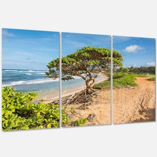 Green Tree on Beach in Kauai Hawaii - Contemporary Seascape Metal Wall At - 36Wx28H