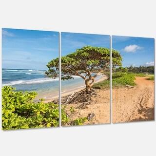 Green Tree on Beach in Kauai Hawaii - Contemporary Seascape Metal Wall At - 36Wx28H
