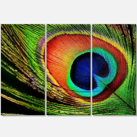 Designart - Peacock Feather - Photography Glossy Metal Wall Art - 36 in. wide x 28 in. high - 3 panels