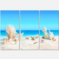 Designart - Seashells on Tropical Beach - Seashore Photo Glossy Metal Wall Art